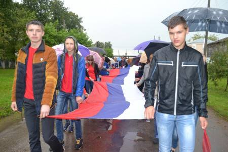 den-flaga